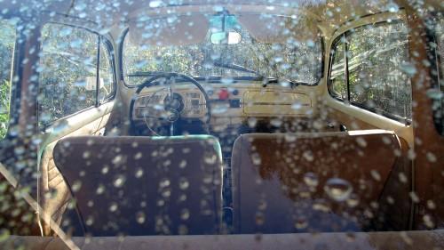 Featured '67 Beetle — Stephan Ruiz