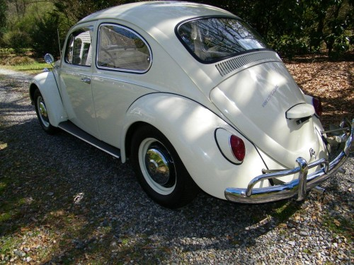Featured '67 Beetle — Bob Hutcheson