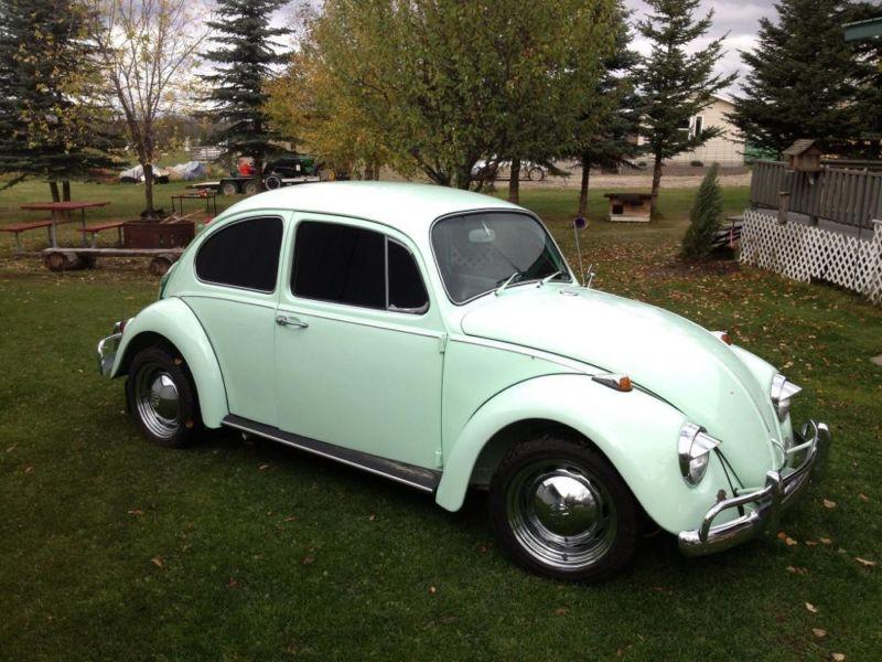 Featured '67 Beetle — Richard Lee