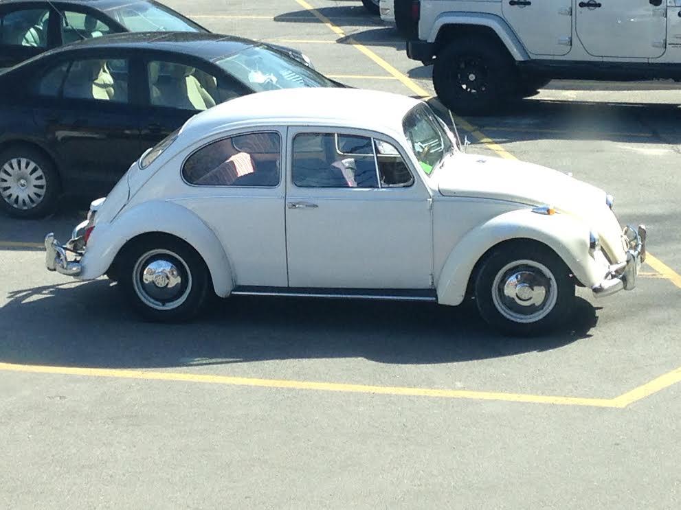 Vintage Volkswagen – Insurance Coverage