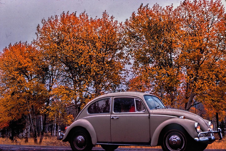 10-Flagstaff-Fall Leaves '78-VW-402-HDR